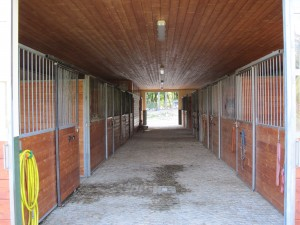 The Horse Section Has 3,5 M Box Stalls And Two Larger Foaling Broodmare  Stalls Opening On Either Side Of The Cobblestone Centre Aisle. Opposite The  Shower ...